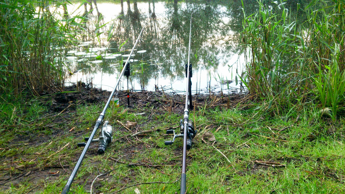 Back on the rods!